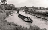 Narrowboats carrying coal - 1960s